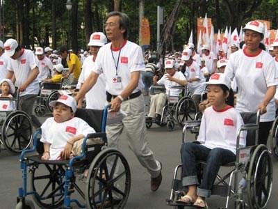 越南全国残疾人调查结果出炉 hinh anh 1