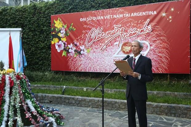 越南驻阿根廷大使馆举行2019年迎春活动 hinh anh 1