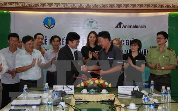 亚洲动物基金为得乐省大象保护工作援助6万美元 hinh anh 1