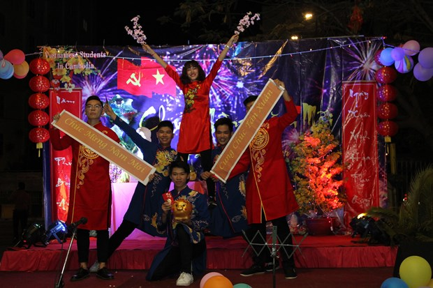 旅外越南人兴高采烈举行2019年迎新春活动 hinh anh 1