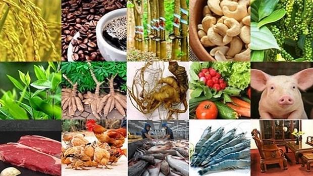 越南13大主要农产品名单出炉 hinh anh 1