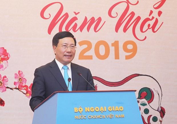 越南外交部举行2019年新春新闻媒体见面会 hinh anh 1