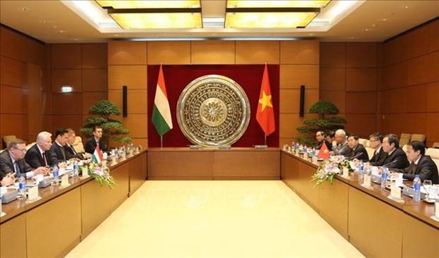 越南始终重视与匈牙利加强多方面的合作 hinh anh 1