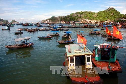 越南海洋岛屿:制定海洋经济可持续发展战略实施计划 hinh anh 1