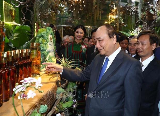 阮春福总理希望玉玲人参为越南药材产业打上深刻的历史烙印 hinh anh 2