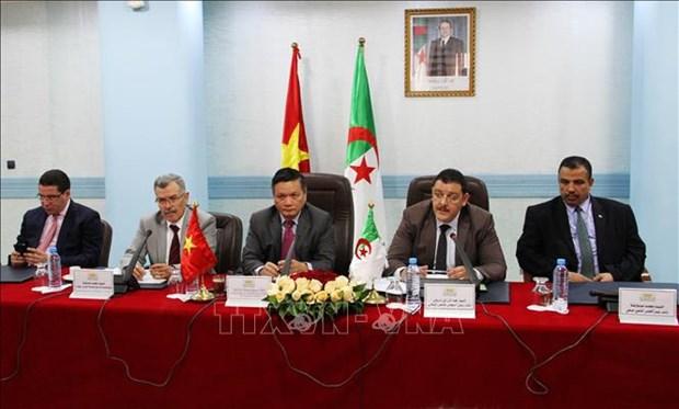 阿尔及利亚——越南议员友好小组成立 hinh anh 1