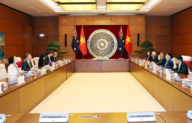 越南国会主席阮氏金银与澳大利亚参议院议长瑞安举行会谈 hinh anh 2