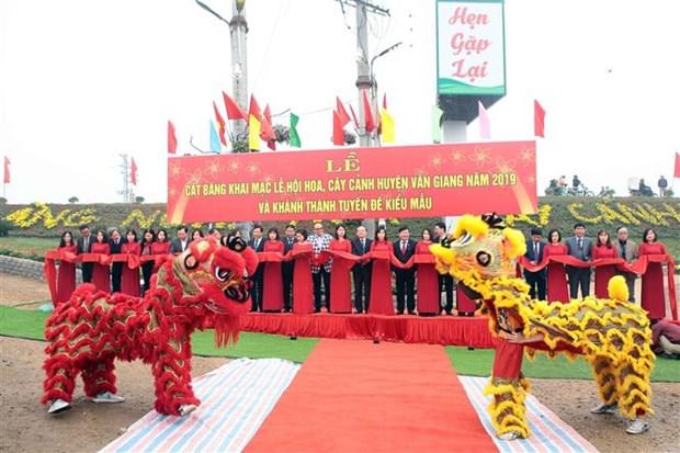 缤纷多彩的文江花卉节在兴安省举行 hinh anh 1