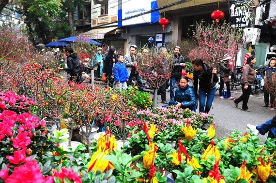 在河内中心感受昔日春节氛围 hinh anh 1