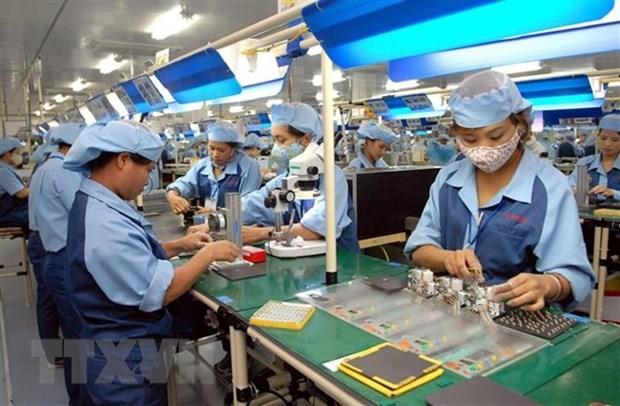 平阳省大部分企业认为今年一季度生产经营活动持续向好 hinh anh 1