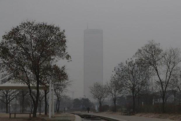 泰国曼谷遭雾霾笼罩 hinh anh 2