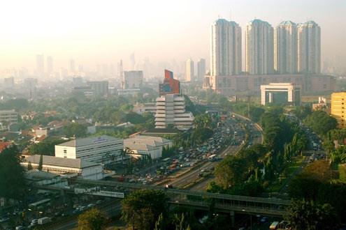 印尼承诺创建生态友好城市 hinh anh 1
