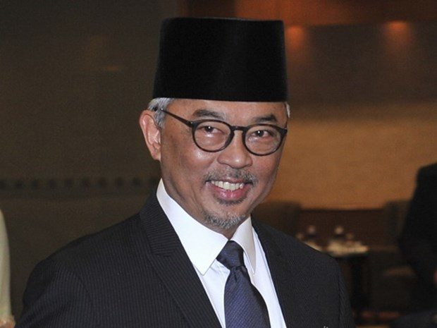 马来西亚选举新国王 hinh anh 1
