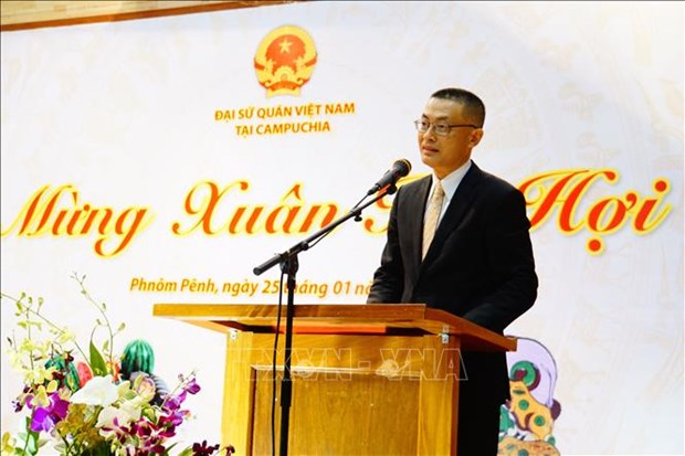 越南驻多国大使馆纷纷举行迎春活动 hinh anh 1
