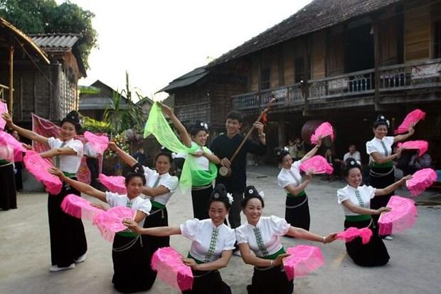 步村——保护和传承泰族文化之地 hinh anh 1