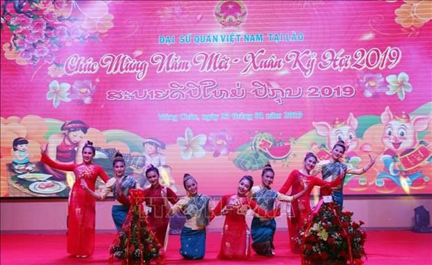 越南驻多国大使馆纷纷举行迎春活动 hinh anh 2