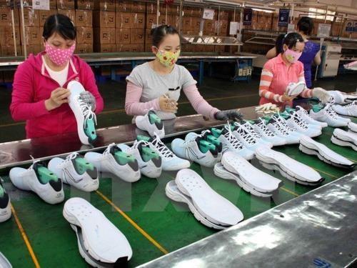 2019年1月同奈省贸易顺差达3亿美元 hinh anh 1
