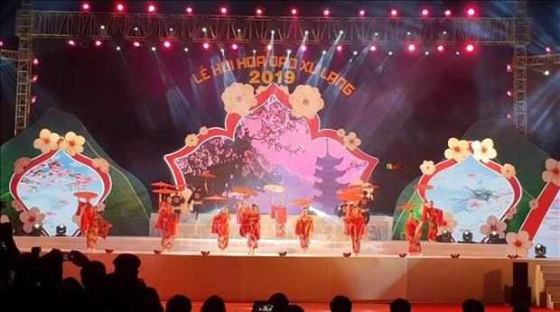 谅山和乂安等省举办多彩活动迎接2019年春节 hinh anh 1
