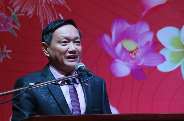 海外各地越南人喜迎新春传递新春祝福 hinh anh 1