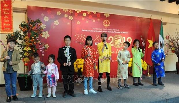 旅居墨西哥和印度越南人欢聚一堂喜迎新春 hinh anh 1