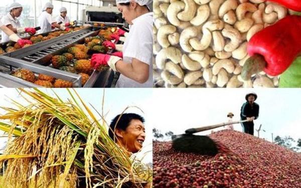 日本对越南86%商品取消进口关税 hinh anh 1