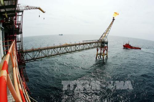 越南国家油气集团1月份油气产量超出既定计划 hinh anh 1