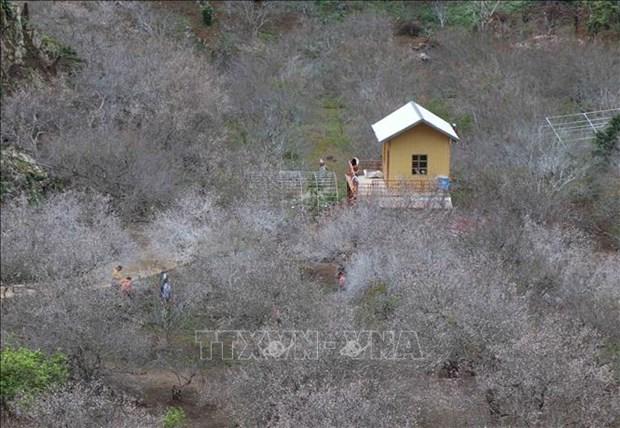 越南政府副总理批准《山罗省木州国家旅游区建设总体规划》 hinh anh 2