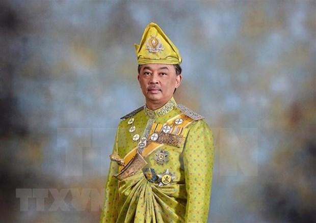 马来西亚国王宣誓就职 hinh anh 1