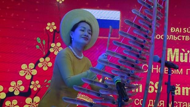 越南驻俄罗斯大使馆举行2019年新春招待会 hinh anh 2
