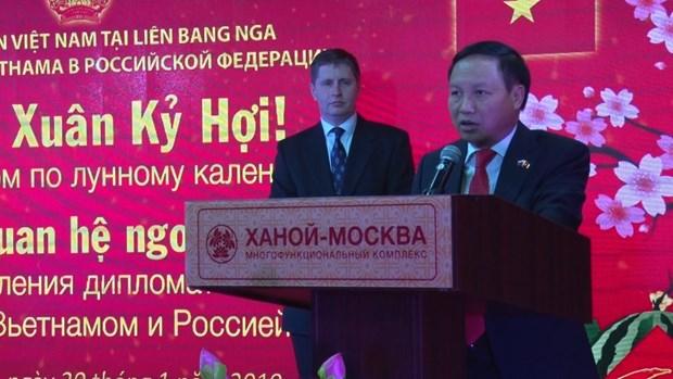 越南驻俄罗斯大使馆举行2019年新春招待会 hinh anh 1