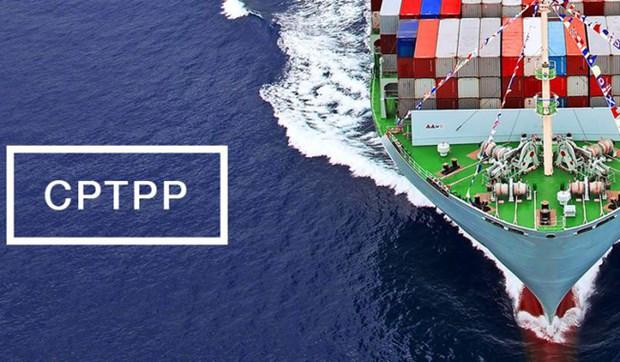 CPTPP正式生效 越南企业努力让挑战变成机遇 hinh anh 1