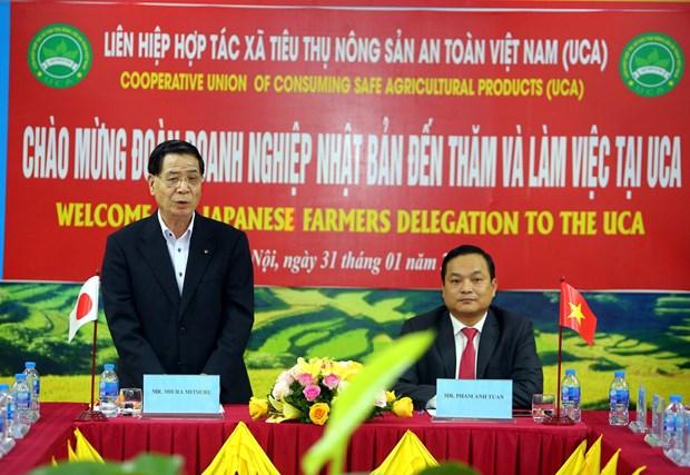 日本企业寻找对越南农产品投资合作商机 hinh anh 1