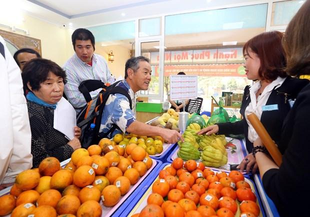 日本企业寻找对越南农产品投资合作商机 hinh anh 3