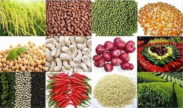 越南农产品出口创下新纪录 hinh anh 1