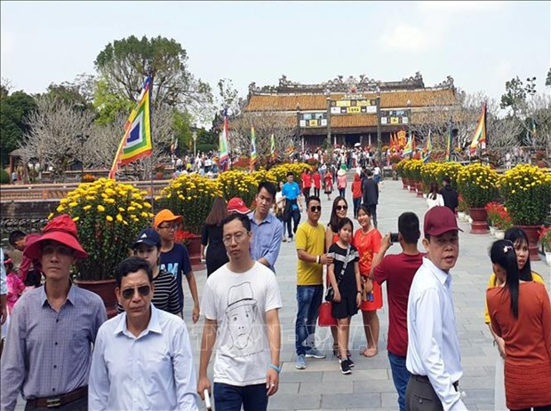 顺化古都遗迹区迎来2.5万名游客冲年喜 hinh anh 1