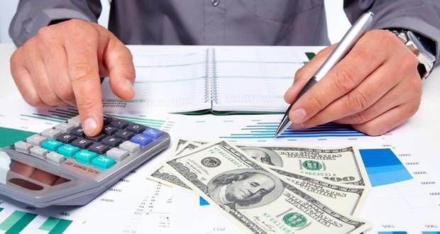 越南国家审计署致力于透明高效的财政管理 hinh anh 1