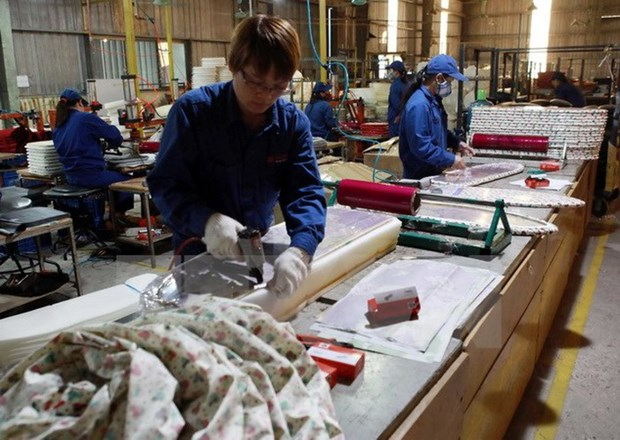 日本企业在越寻求出口合作伙伴 hinh anh 1