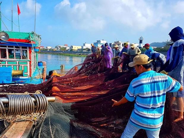 李山岛县缺乏渔业后勤补给服务配套设施 hinh anh 1