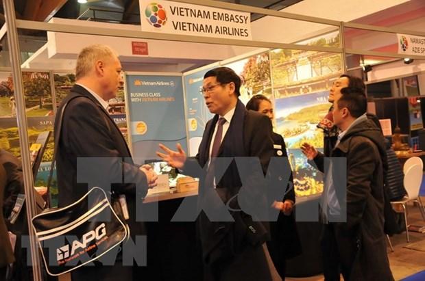 越南旅游日益受到比利时游客的青睐 hinh anh 1