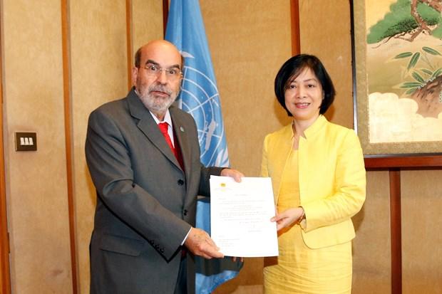 FAO总干事:越南在扶贫济困和粮食安全保障等方面取得可喜成果 hinh anh 1