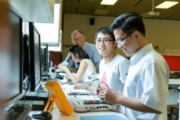 越南信息技术行业面临人力短缺难题 hinh anh 1