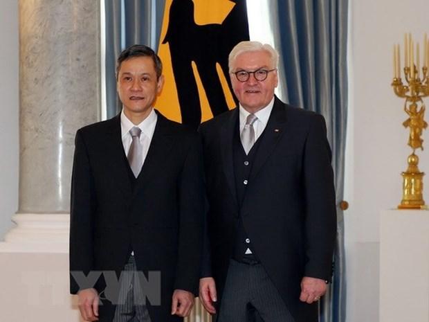 越南驻德国大使向德国总统施泰因迈尔递交国书 hinh anh 1