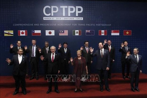 泰国即将向官方提交关于加入CPTPP的提案 hinh anh 1