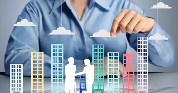 民营经济对国家经济发展做出重大贡献 hinh anh 1