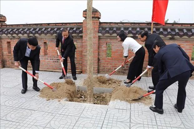 富寿和宁平等省举行植树活动启动仪式 hinh anh 2