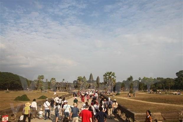 2019年新春佳节期间柬埔寨接待游客量达近100万人次 hinh anh 1