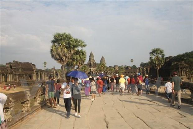 2019年新春佳节期间柬埔寨接待游客量达近100万人次 hinh anh 2