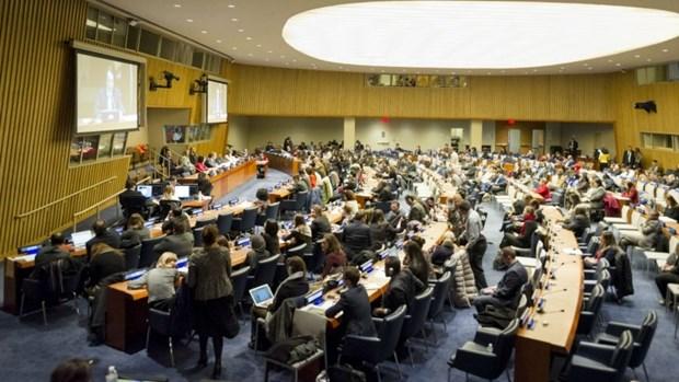 越南代表出席联合国经社理事会第57次会议 hinh anh 1