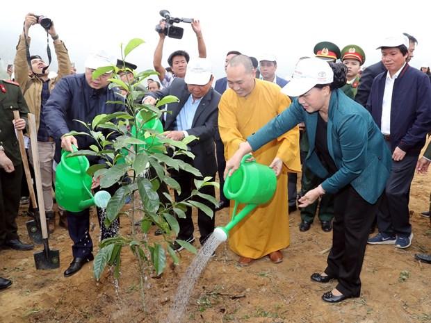 国会主席阮氏金银出席和平省植树造林出征仪式 hinh anh 1