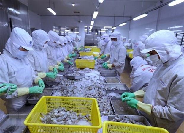 越南力争2019年虾类出口创汇40亿美元 hinh anh 1